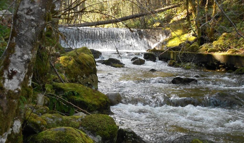 holland.creek_.ladysmith